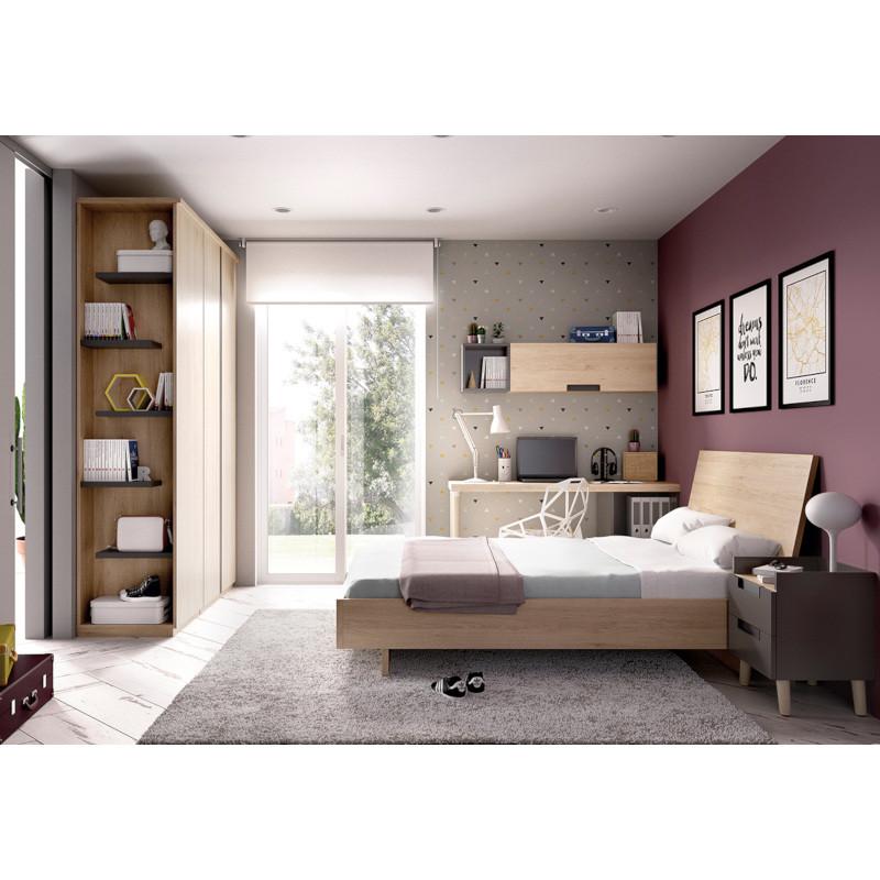 Moderne tienerkamer met extra gastenbed opbergschuiven en apart bureau newworld interiors - Moderne tienerkamer ...